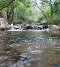 Naturaleza y rio - Upitravel