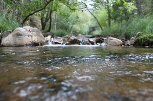 Naturaleza y rio – Upitravel