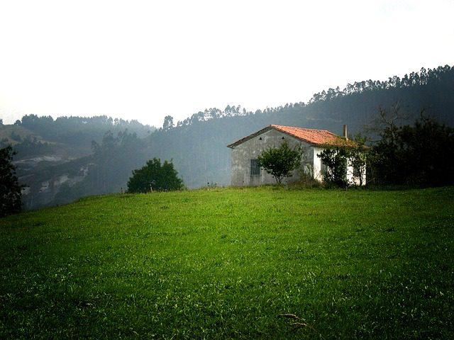 naturaleza-cantabria-IP