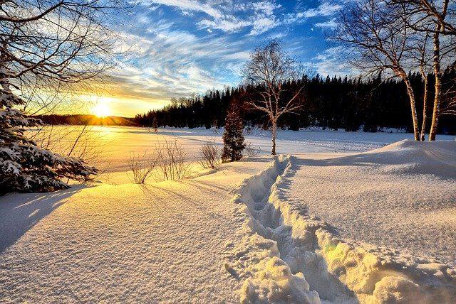 nieve – IP