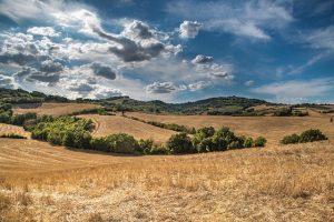 Medio-rural-300×200